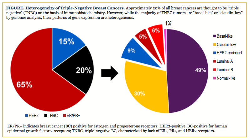 cancer negative Breast estrogen
