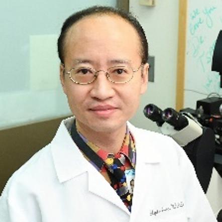 Stephen H. Tsang, MD, PhD