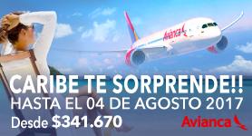http://tije.cl/vuelos/