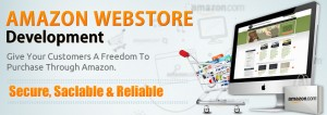 Amazon Webstore success stories