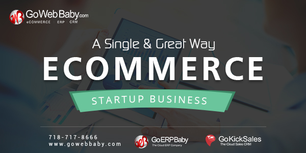 ecommerce startup business