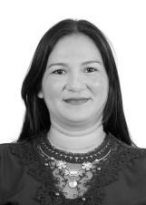 Candidato Joelminha 20131