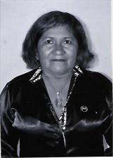 Candidato Mariazinha 11333