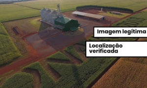 Agricultor escreve o nome de Bolsonaro em plantações