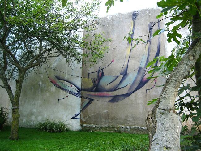 Fresques Par Aire - Mar Del Plata (Argentine)