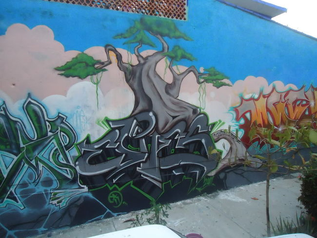 Fresques Par Eres - Puerto Escondido (Mexique)