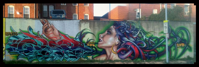 Fresques Par Else - Washington (DC)