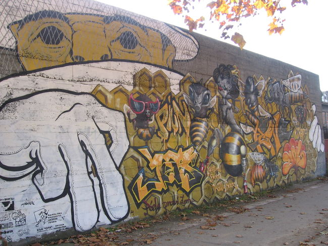 Fresques Par Poky Spa - Beograd (Serbia)
