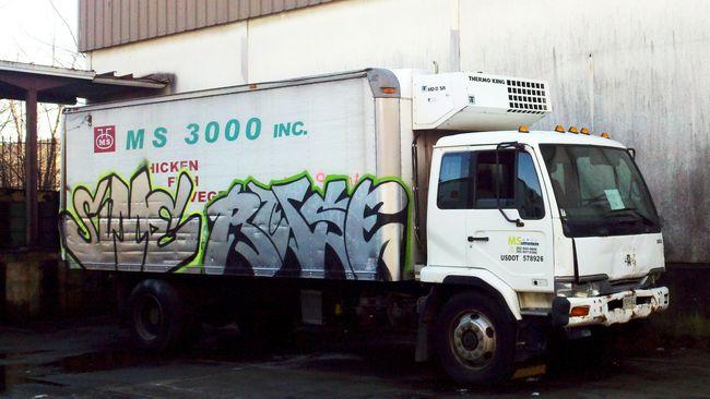 Chrome Par Ruse 3030, Sime - Washington (DC)