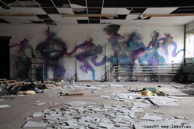 Street Art Par ~1escv? - Rochesson (France)