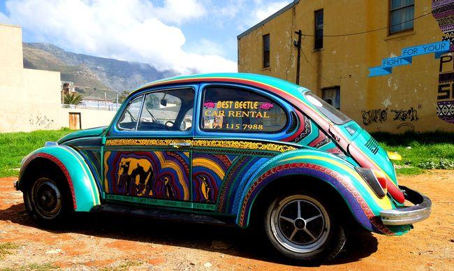 Street Art Par Miguel Lomott, Senor Gruen - Le Cap (Afrique Du Sud)