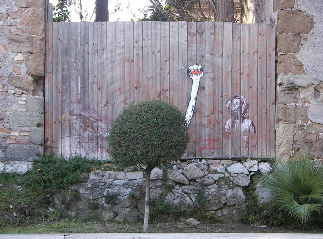 Street Art Par C215, Pao  - Rome (Italie)