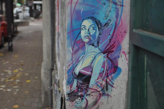 Street Art Par C215 - Vitry-sur-Seine (France)