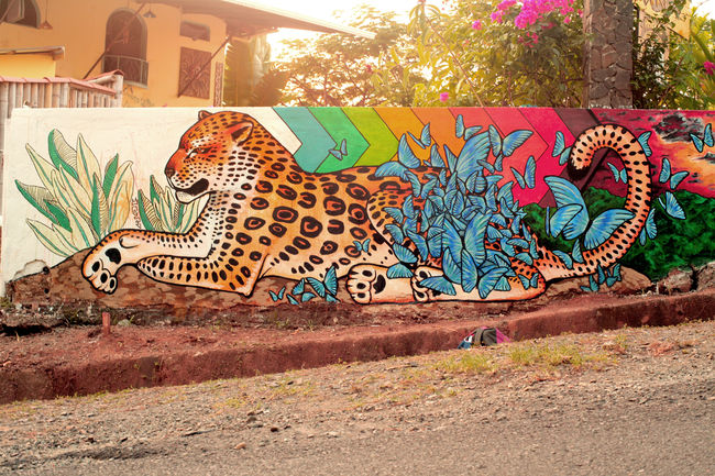 Street Art Par Kazilla - Quepos (Costa Rica)