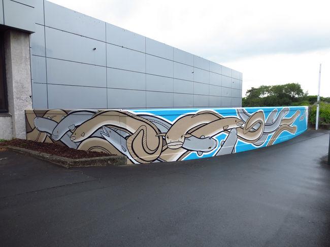 Street Art Par Alex Mcleod - Hamilton (Nouvelle-Zelande)