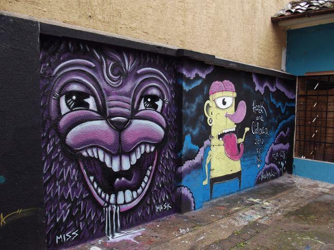 Street Art Par Miss Hask - Quito (Equateur)