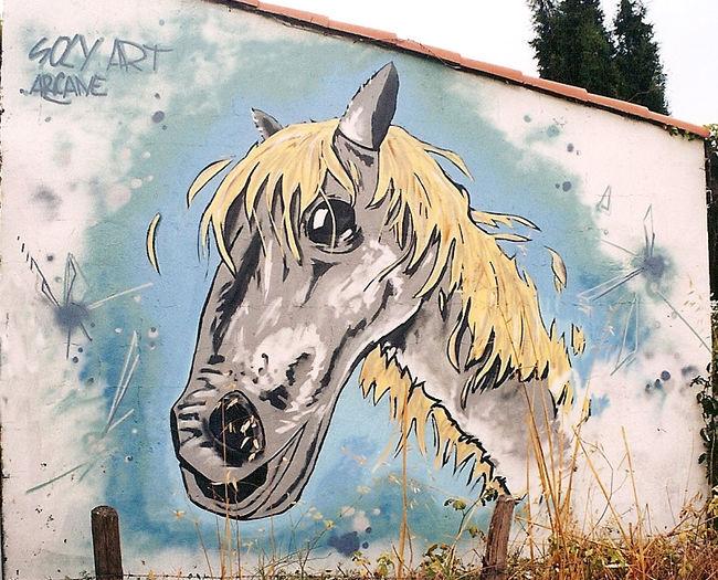 Fresques Par Soly.art - Montpellier (France)