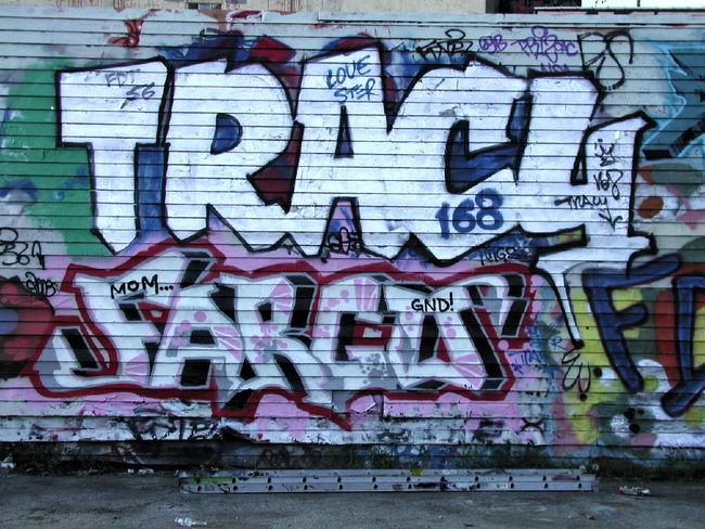 Piece By Tracy 168, Fargo - New York City (NY)
