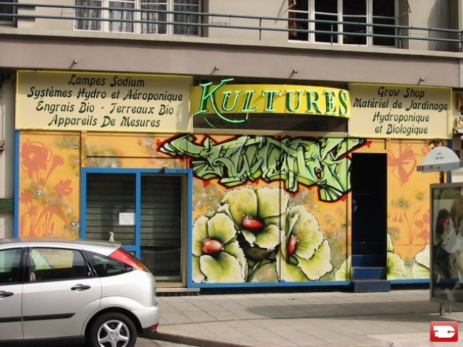 Street Art Par Den - Grenoble (France)