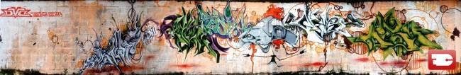 Fresques Par Mesh, Efas, Diaz - Lille (France)