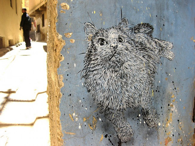 Street Art Par C215 - Fez (Maroc)