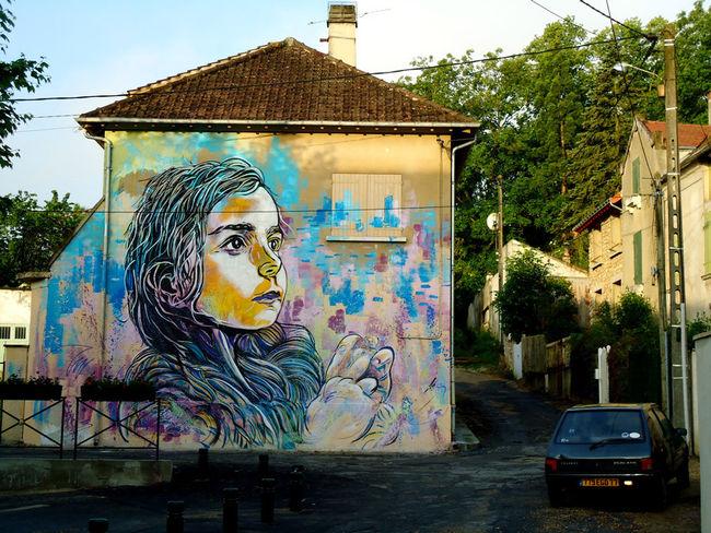 Street Art Par C215 - Montry (France)