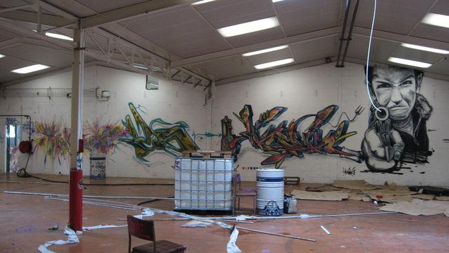Fresques Par Shok44 - Reze (France)