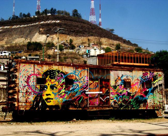 Street Art Par Stinkfish - Oaxaca De Juarez (Mexique)