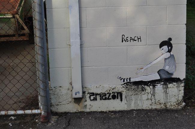 Street Art Par Amazon - Adelaide (Australie)