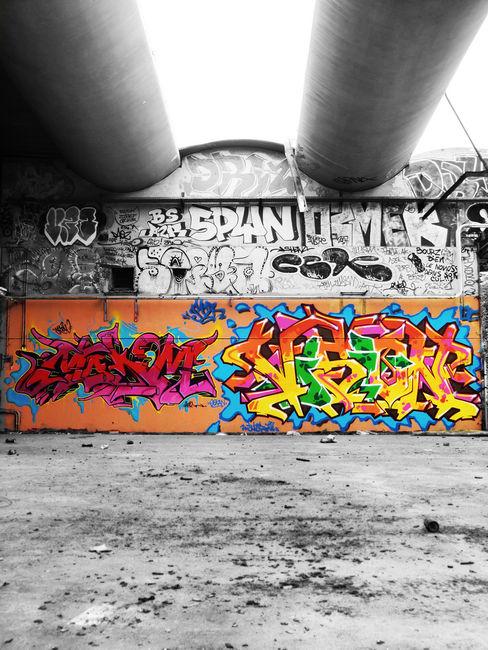 Fresques Par Demo, Vision - Massy (France)