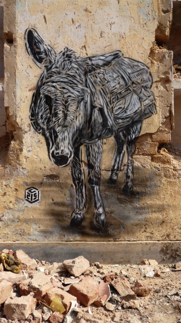 Street Art Par C215 - New Delhi (Inde)