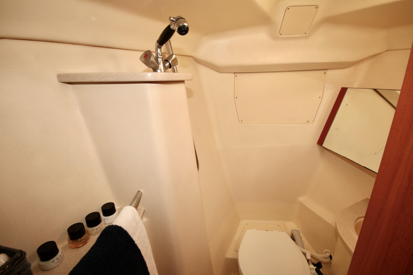 2004 Hunter Passage 420, Guest head and shower