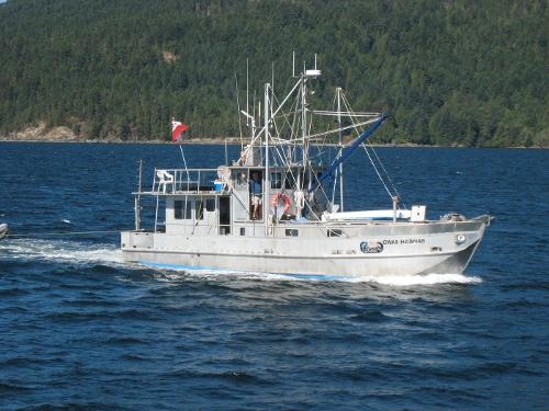 Custom Trawler 1975