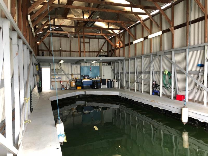 Lynnwood Marina Slip Interior