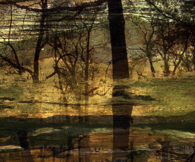 2018 Gallery Collection #5, Golden Fleece, Russian River Valley Syrah