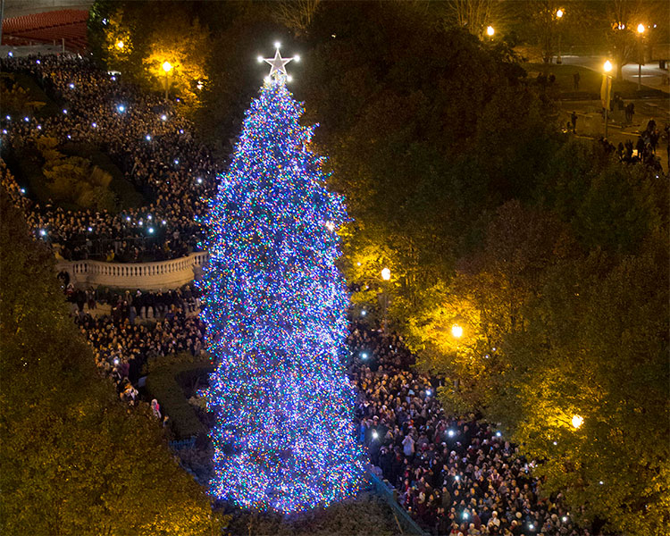 ordinary chicago christmas trees part 4 mayor rahm emanuel orders the lighting of the - Christmas Trees Chicago