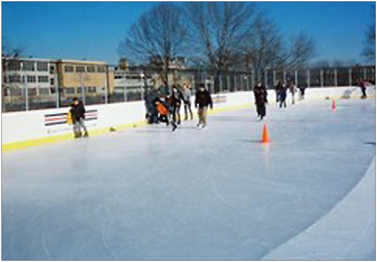 local ice skating rinks graphic chicago tribune