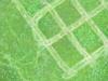 Leevis-20120523-175-47_thumb