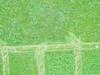 Leevis-20120523-175-42_thumb