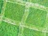 Leevis-20120523-175-133_thumb