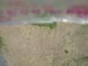 Img 3480 thumb