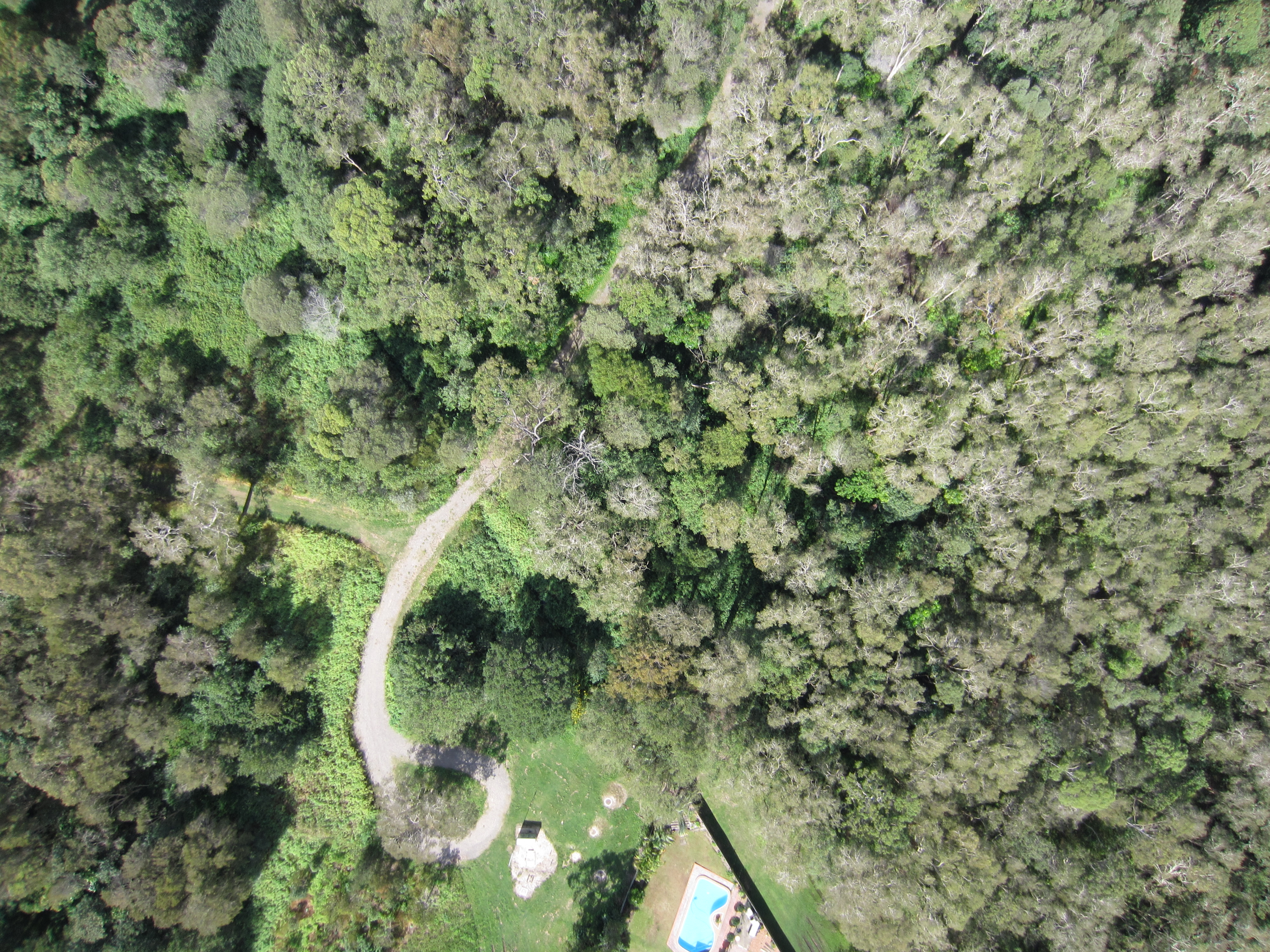 melaleuca-environmental-park