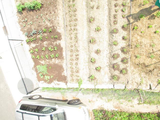 highland-community-garden---visible-ds