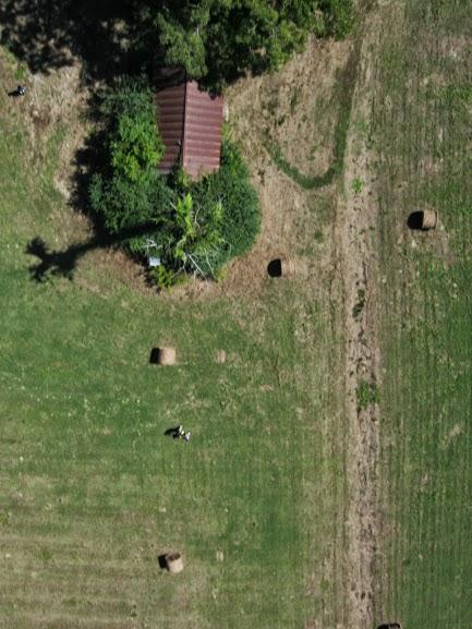 jodys-farm2