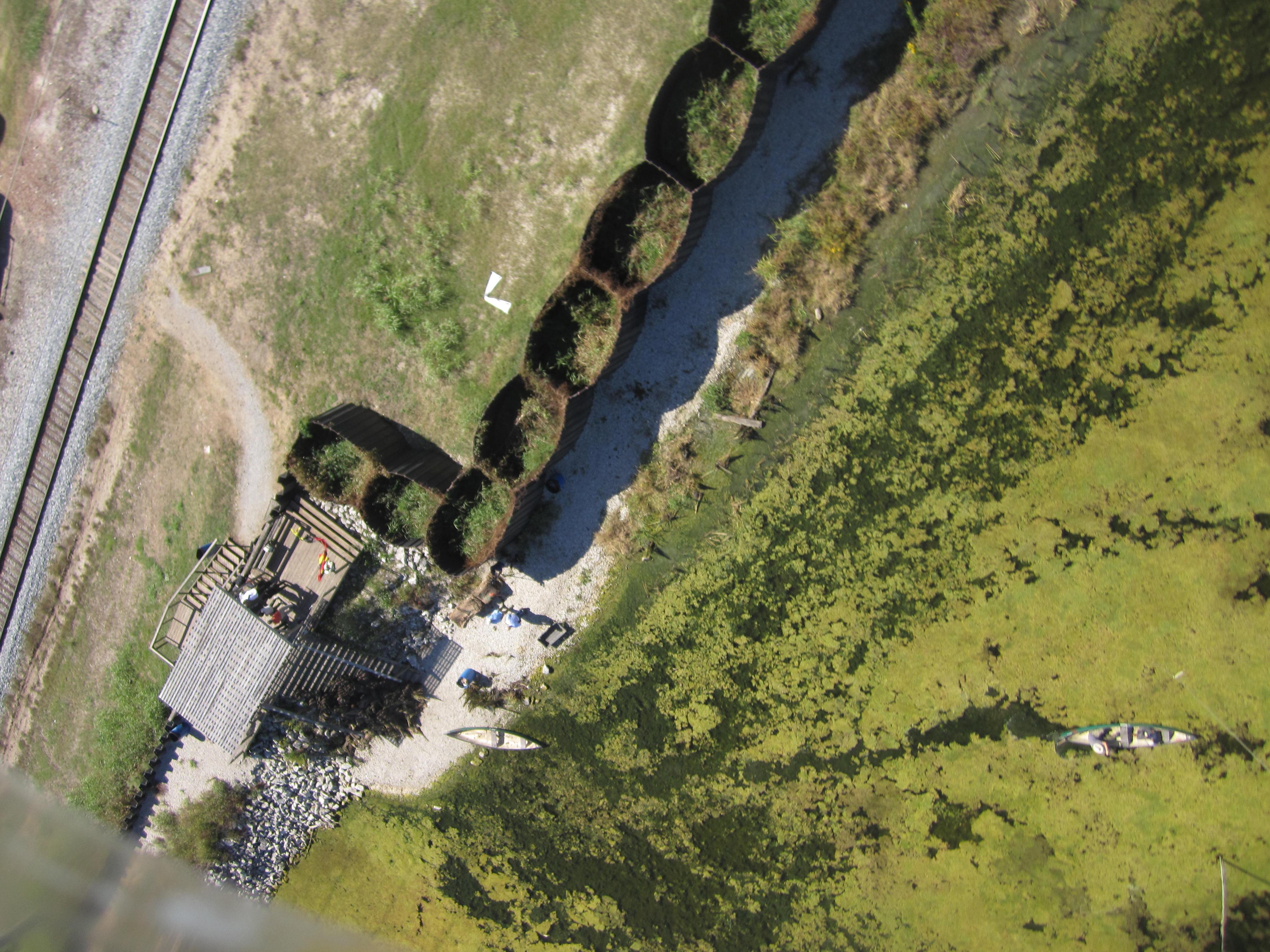 bayou-bienvenue-shoreline-planting