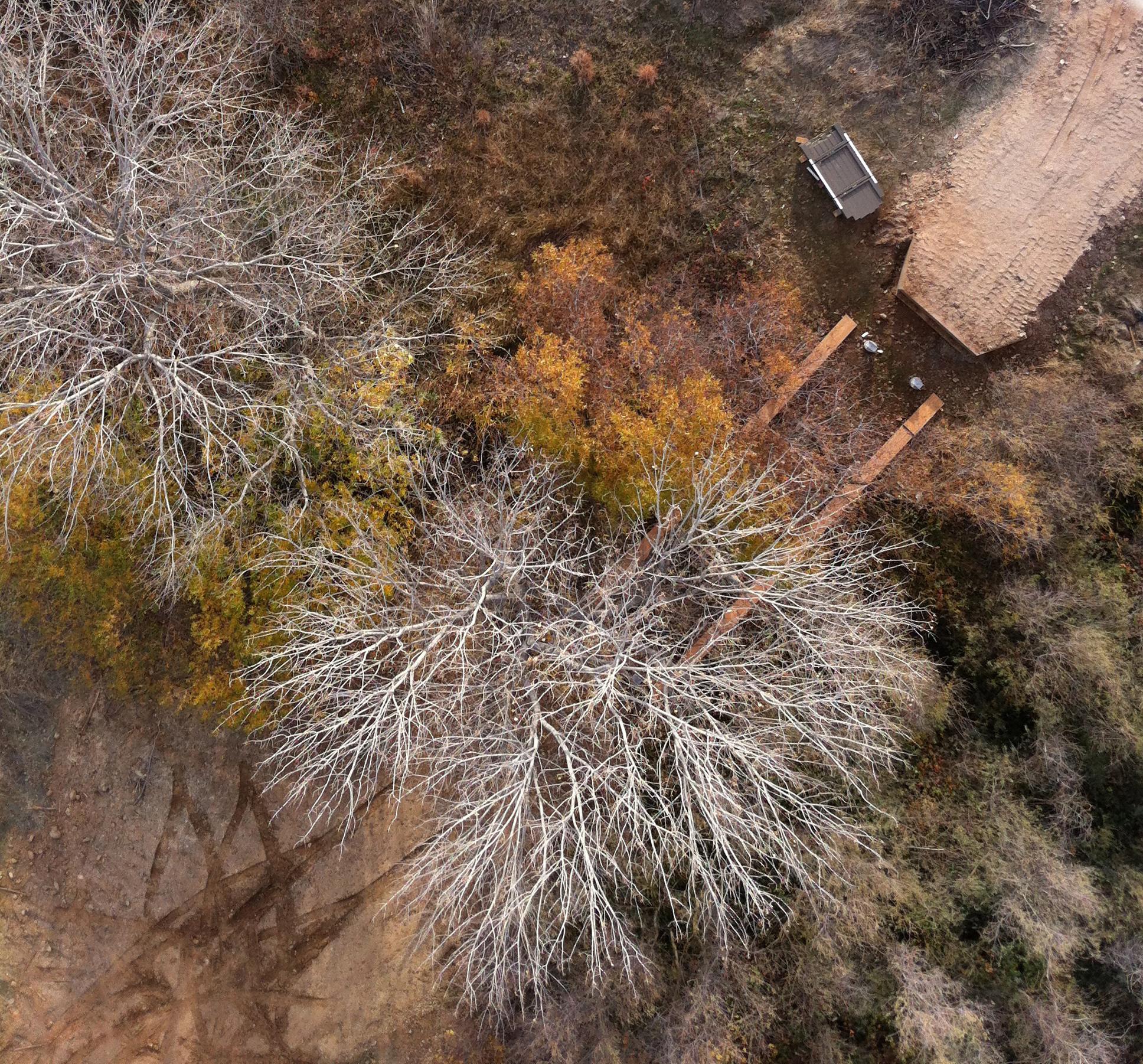 folsom-lake-college-wetlands-kap-2013-12-02
