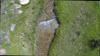 Vlcsnap-2014-06-09-13h48m04s203_thumb