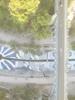 Picture_144122074113-puente-puente_thumb