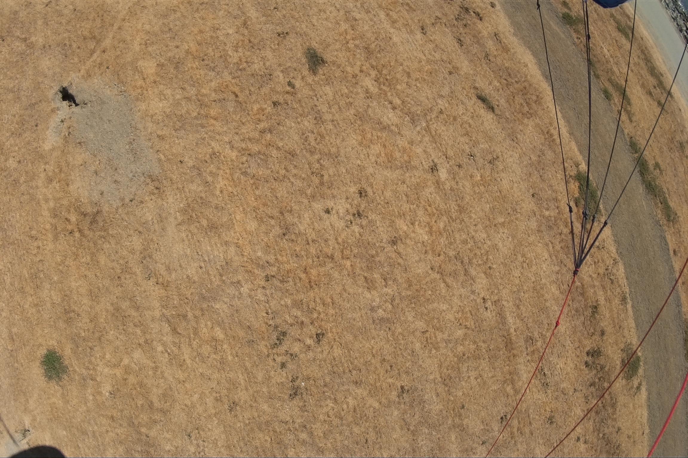 san-leandro-marina-kite-flight-9-7-14
