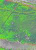 Img_4374_ndvi_color_thumb